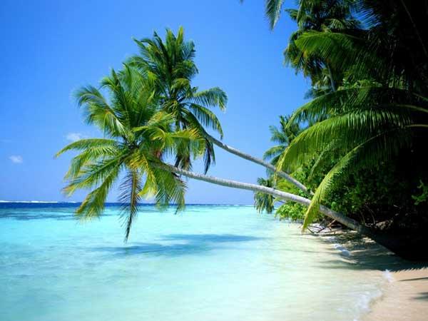 Decálogo de ESET para estar seguros estas vacaciones 49