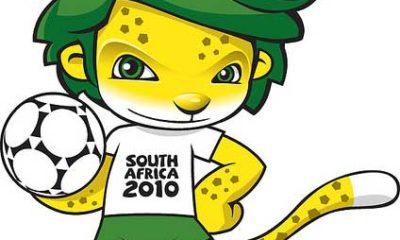 Cuidado con los PDF con el Mundial de Sudáfrica como reclamo, ¡pueden ocultar malware! 47