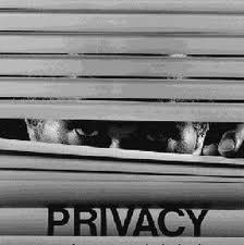Exigen más seguridad para los datos on-line recopilados por las compañías 64