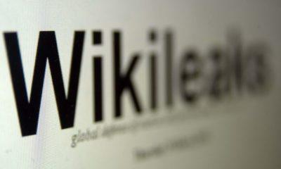 La web WikiLeaks bajo ataque DDoS 154