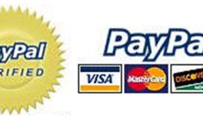 Anonymous lanza ataque DDoS contra PayPal 66
