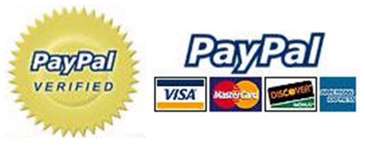 Anonymous lanza ataque DDoS contra PayPal 49