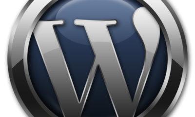 WordPress 3.0.2 llega al mercado solucionando un par de bugs críticos 67
