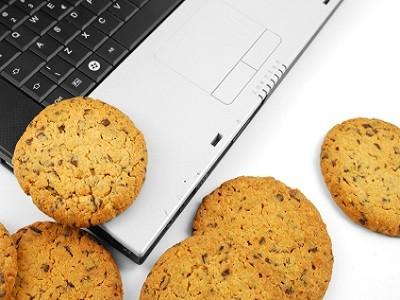 La agencia de seguridad europea preocupada por las cookies 47