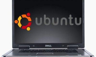 40 vulnerabilidades descubiertas en el núcleo de Ubuntu 10.04