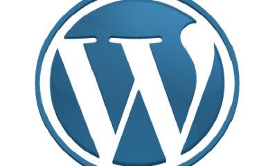 Ataque de denegación de servicio en WordPress.com 88