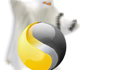 Norton lanza sus soluciones Internet Security y Norton AntiVirus 2012