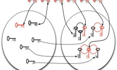 Investigadores descubren fallos en la generación de claves públicas del algoritmo RSA 58