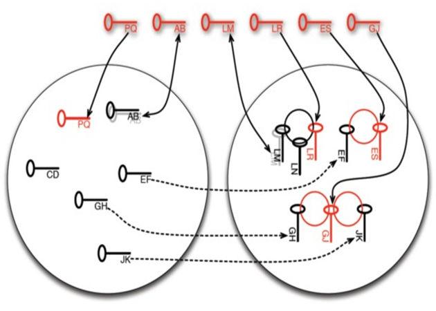 Investigadores descubren fallos en la generación de claves públicas del algoritmo RSA 49
