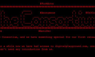 Digital Playground hackeado, otro sitio porno 'desnudado' 73
