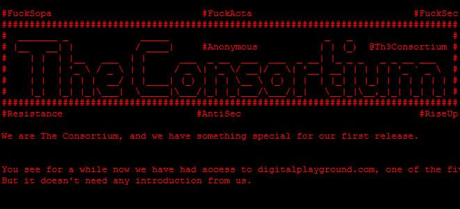 Digital Playground hackeado, otro sitio porno 'desnudado' 54