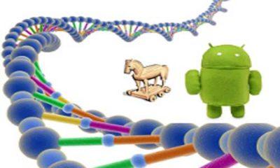 El Android Malware Genome Project ya está en marcha 85