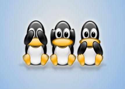 Linux es el sistema preferido para los fraudes en la red