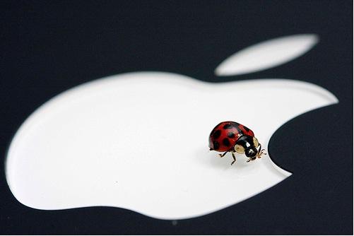 Apple cifra accesos a la App Store para solucionar agujero de seguridad 47