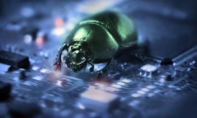 Descubierta vulnerabilidad en el kernel Linux 65