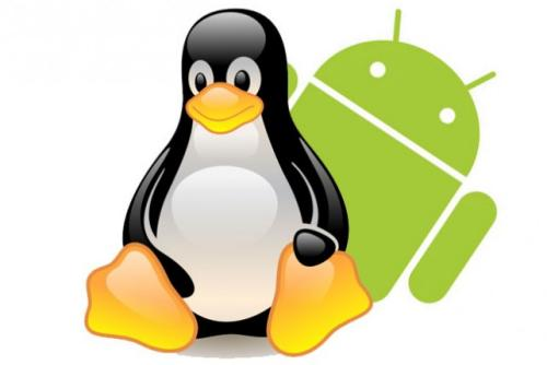 """Android, una """"práctica de negocio fraudulenta y engañosa"""""""