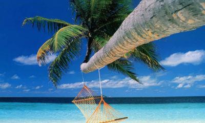Cuidado con los chollazos en vacaciones on-line 57