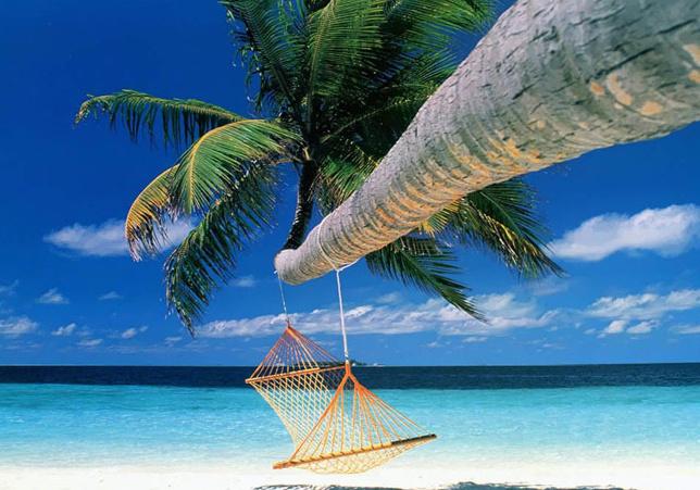 Cuidado con los chollazos en vacaciones on-line 55