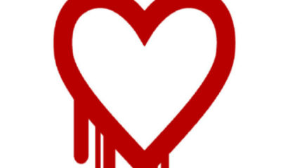 Heartbleed, el mayor fallo de seguridad descubierto en los últimos años 53