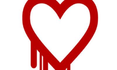 Heartbleed continúa amenazante 83