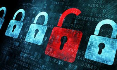 Project Zero, la solución de Google para que las empresas encuentren vulnerabilidades 63