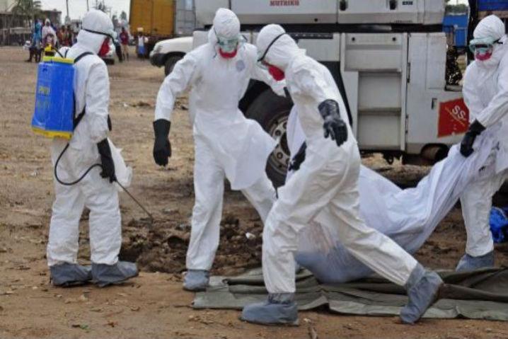 El ébola, un gancho para ataques en la red 48