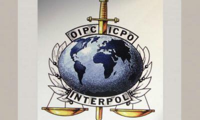 Trend Micro y la Interpol colaboran en la lucha global contra el cibercrimen 80