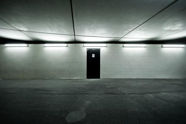 puertas traseras