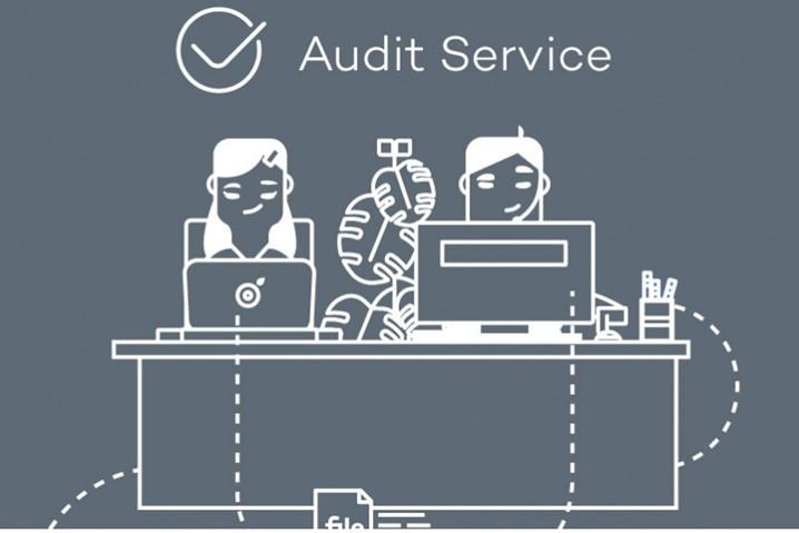Panda Audit Service