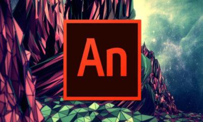 ¿Llega el final para Adobe Flash? 49