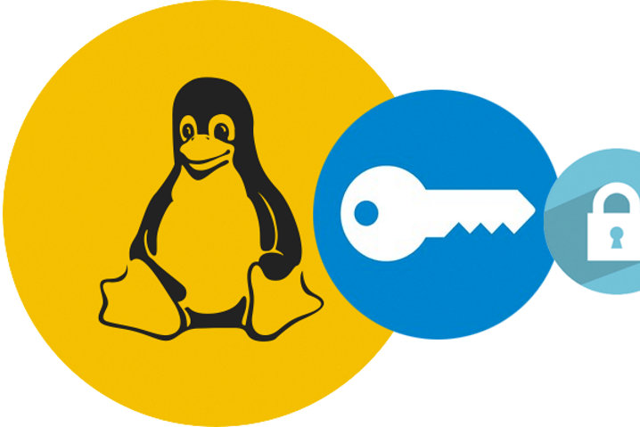 Hallada una vulnerabilidad en la utilidad de cifrado de Linux