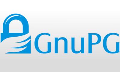 Investigadores rompen con éxito el cifrado RSA de 1024-bit de GnuPG 46