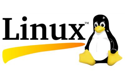 Un viejo bug de Linux aparentemente sin importancia era en realidad un problema de seguridad