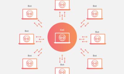 Logran desactivar Andromeda, una de las mayores familias de malware vinculadas a las botnets