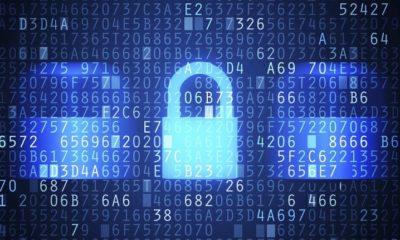 Alertan que los certificados falsos permiten saltarse la mayoría de los antimalware