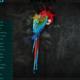 Parrot OS 4.6: nueva versión de una de las mejores distribuciones de hacking ético 59