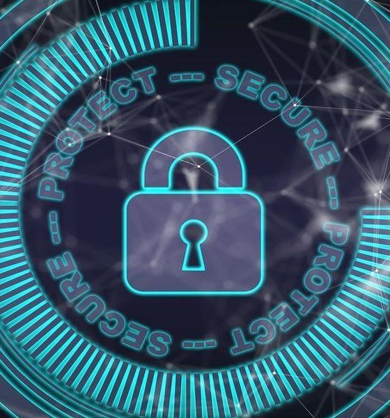 empresas-talento-ciberseguridad