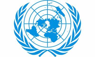 Expuestos más de 100.000 registros de personal de la ONU